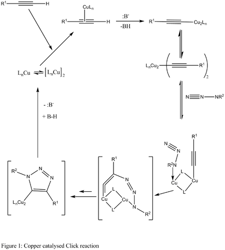 Mechanism for Copper catalysed click chemistry
