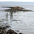 Culross Pier - geograph.org.uk - 840410.jpg