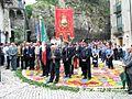 Cusano Mutri (BN), 2007, Infiorata, la processione pomeridiana. - Flickr - Fiore S. Barbato (15).jpg