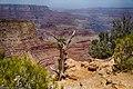 DSC4244 HDR - panoramio.jpg