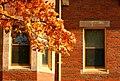 Dalton Hall in Fall (2898676990).jpg