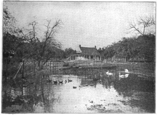 Davenport farm