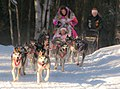 DeeDee Jonrowe - 2013 Iditarod Ceremonial Start.jpg