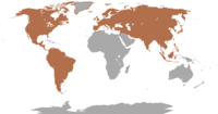 Combined native range of all species of deer