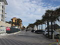 Deerfield Beach Jan2014 Palms.JPG