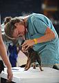 Defense.gov photo essay 110605-N-NY820-586.jpg