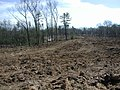 Deforested area in Hartford County, Connecticut.jpg