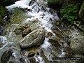Demjanica river - panoramio (1).jpg