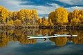 Deschutes National Forest Recreation kayaking (36202024581).jpg