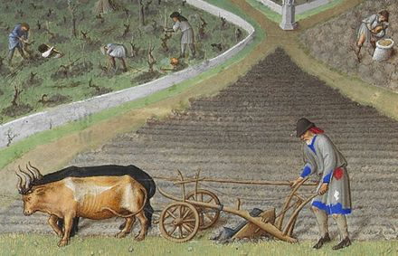 Plough agriculture. The castle in the background is Lusignan. Detail from the calendar Les très riches heures from the 15th century. This is a detail from the painting for March.