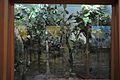 Diorama - Deciduous Trees - Zoological Gallery - Indian Museum - Kolkata 2014-04-04 4378.JPG