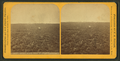 Distant view, Fort Lincoln. (Showing a buffalo skull on the prairie in foreground.), from Robert N. Dennis collection of stereoscopic views.png