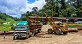 District-Tawau Sabah Logging-Camp-01.jpg