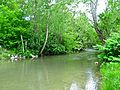 Dix-River-Brodhead-ky.jpg