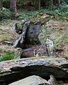 Dolmen de Corn-er-Houët, Caurel, France-6.jpg