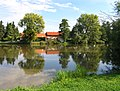 Dolní Chvatliny, local pond.jpg