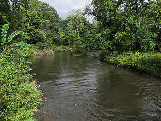 Dowagiac River river in the United States of America