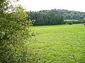 Downland near White Lane - geograph.org.uk - 547009.jpg