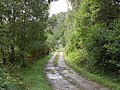 Driveway to Cluanie - geograph.org.uk - 247839.jpg