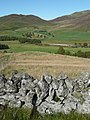 Dry stone wall - geograph.org.uk - 1493889.jpg
