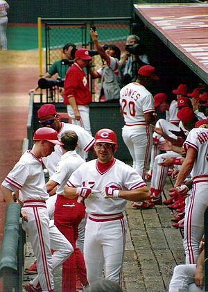 Dugout (baseball) - Cincinnati Reds' dugout, 1991