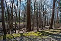 Dugway Brook - Lake View Cemetery - 2015-04-04 (22171497234).jpg