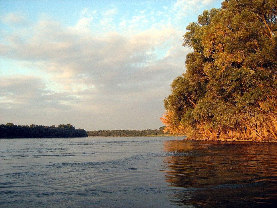 Dunav kod Apatina X