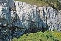 Dunham Dolomite (Lower Cambrian; Route 2 roadcut, southeast of the Lamoille River bridge, Vermont, USA) 1.jpg