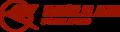 EagleAir Iceland logo.png