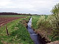 East Halton Beck - geograph.org.uk - 162683.jpg