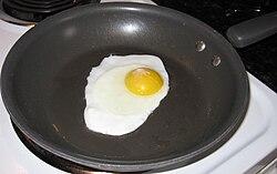 Eggisprotein.jpg