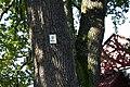 Eika i solvikveien, nærbilde av verneskilt.JPG