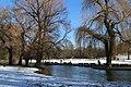 Englischer Garten Winter Muenchen-8.jpg