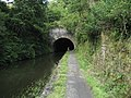 Entrance to Falkirk Tunnel - geograph.org.uk - 1446255.jpg