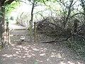 Entrance to Laurel Walk, St Leonard's Forest - geograph.org.uk - 430007.jpg