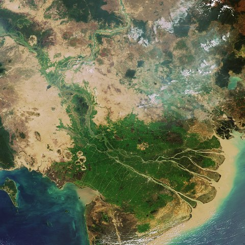 https://upload.wikimedia.org/wikipedia/commons/thumb/f/f8/Envisat_image_of_the_Mekong_Delta_in_Vietnam_ESA210677.tiff/lossy-page1-480px-Envisat_image_of_the_Mekong_Delta_in_Vietnam_ESA210677.tiff.jpg