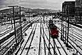 Estación nevada.jpg