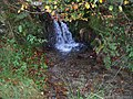 Exmoor , Waterfall - geograph.org.uk - 1136441.jpg