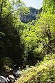 FR64 Gorges de Kakouetta67.JPG