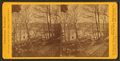 Fairmount Park, from Robert N. Dennis collection of stereoscopic views 2.png