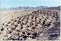 Faixa de Buracos - Linhas de Nazca - Peru - Band of Holes - 4 - panoramio.jpg