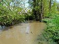 Farganaud Saint-Laurent-des-Hommes petite route inondée amont.JPG