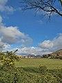 Farmland, Balmichael - geograph.org.uk - 1514771.jpg