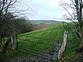 Farmland south of Rhyscog - geograph.org.uk - 693239.jpg