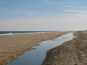 Fenwick Island State Park - Looking south at Fenwick Island State Park beach