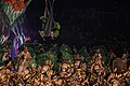 Festival de Parintins (43515574901).jpg