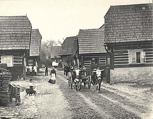 Jilemnice - Typical street in 1907