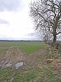 Field near Ogle - geograph.org.uk - 1800076.jpg