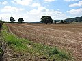 Field of stubble near Laine's Farm - geograph.org.uk - 535013.jpg