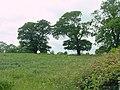 Fields to Southwest of Stoneyford Farm - geograph.org.uk - 18232.jpg